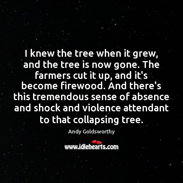 Image, I knew the tree when it grew, and the tree is now