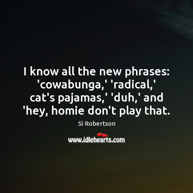 I know all the new phrases: 'cowabunga,' 'radical,' cat's pajamas, Image