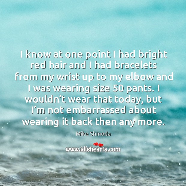 I know at one point I had bright red hair and I had bracelets from my wrist up to my elbow and Mike Shinoda Picture Quote