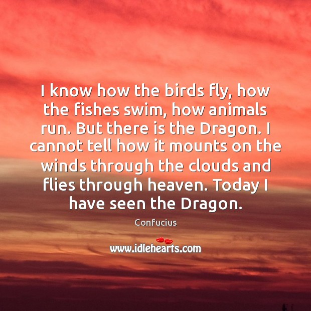 I know how the birds fly, how the fishes swim, how animals Image