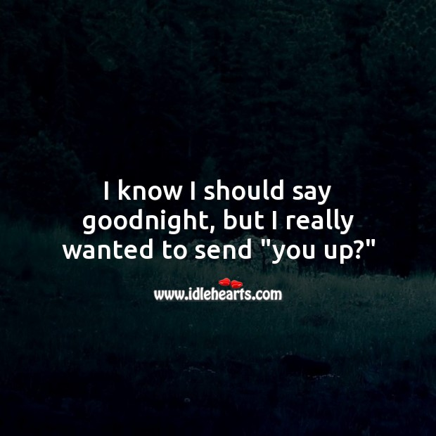 "I know I should say goodnight, but I really wanted to send ""you up?"" Good Night Quotes for Him Image"