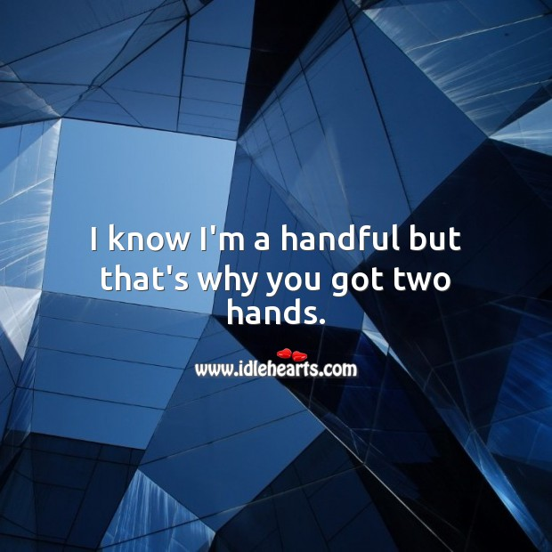 I know I'm a handful but that's why you got two hands. Funny Quotes Image