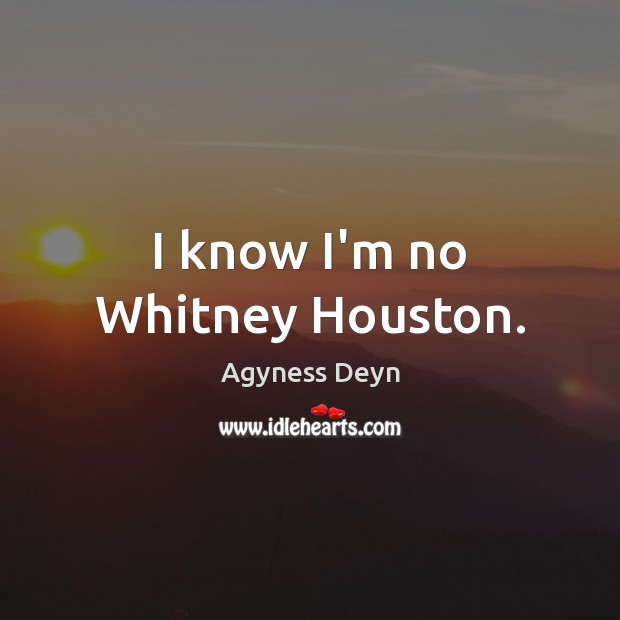 I know I'm no Whitney Houston. Agyness Deyn Picture Quote