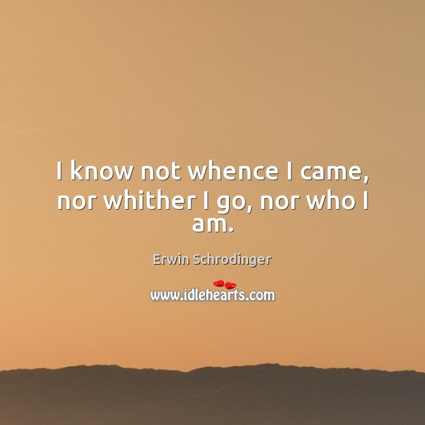 I know not whence I came, nor whither I go, nor who I am. Image