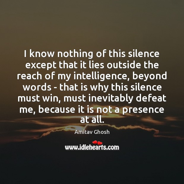 I know nothing of this silence except that it lies outside the Image