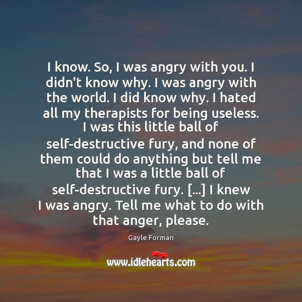 I know. So, I was angry with you. I didn't know why. Gayle Forman Picture Quote