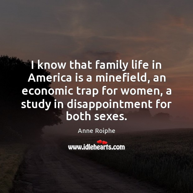Image, I know that family life in America is a minefield, an economic