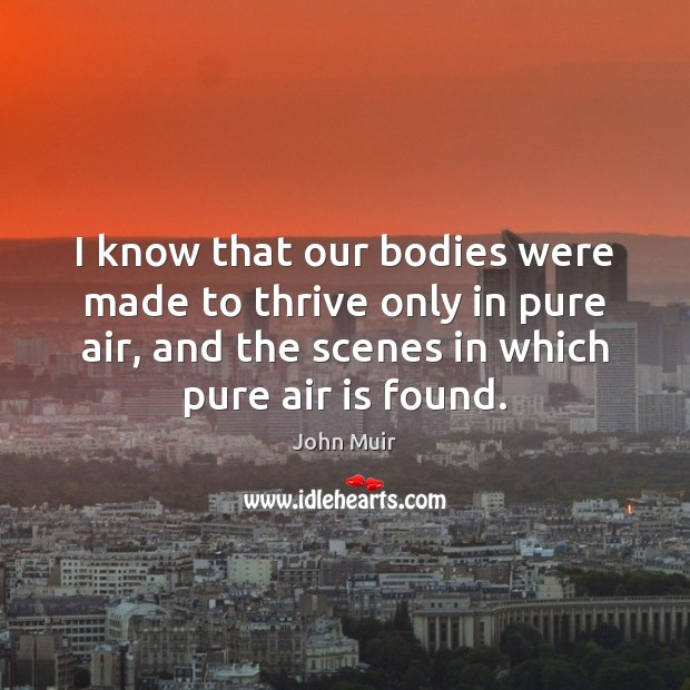 I know that our bodies were made to thrive only in pure John Muir Picture Quote