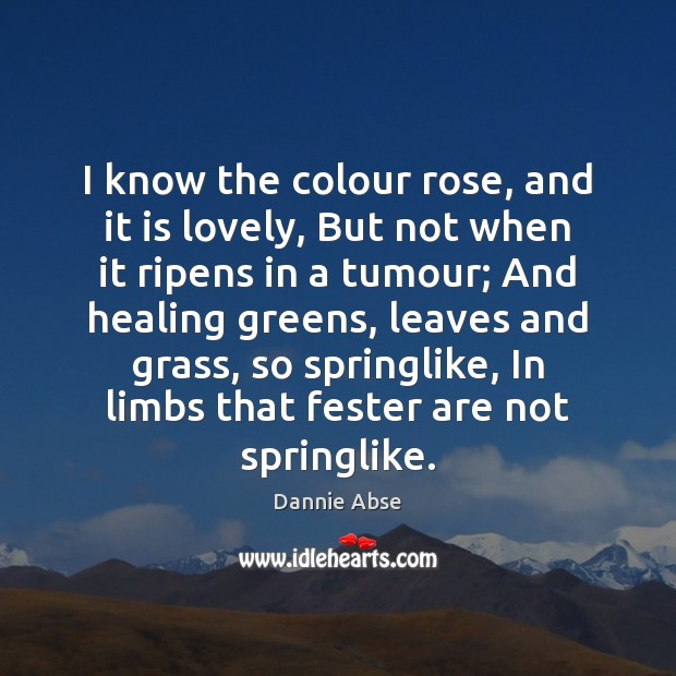 I know the colour rose, and it is lovely, But not when Image
