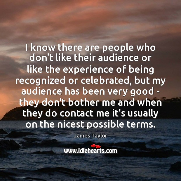 I know there are people who don't like their audience or like James Taylor Picture Quote