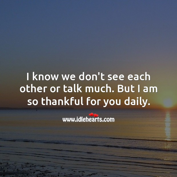 I know we don't see each other or talk much. But I am so thankful for you daily. Thank You Quotes Image