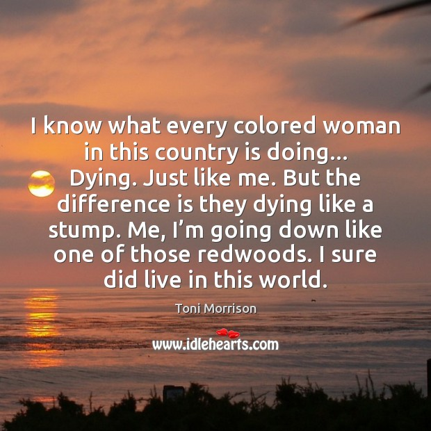 I know what every colored woman in this country is doing… Dying. Toni Morrison Picture Quote