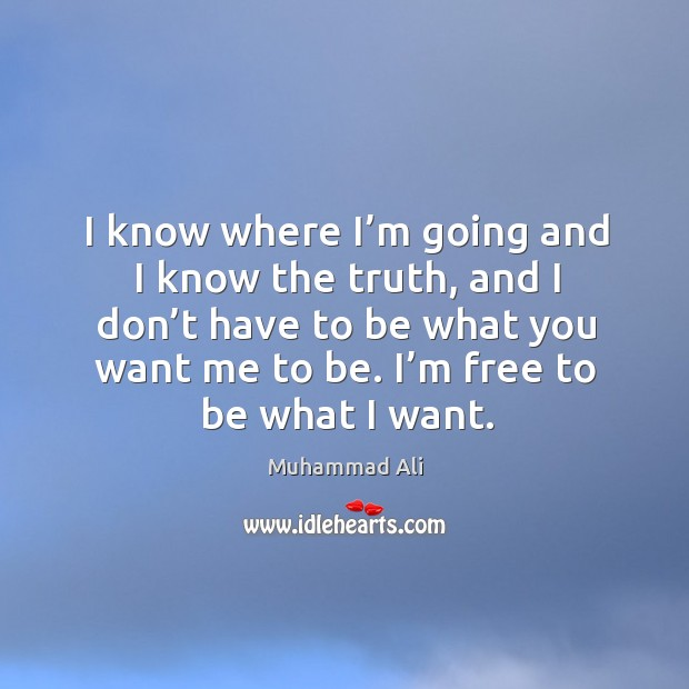 Image, I know where I'm going and I know the truth, and I don't have to be what you want me to be.