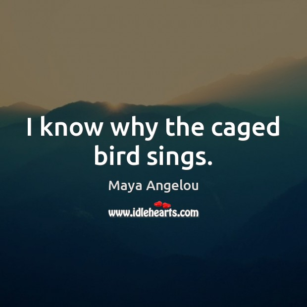 Image, I know why the caged bird sings.