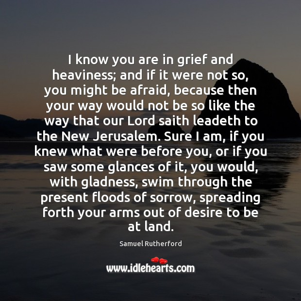 I know you are in grief and heaviness; and if it were Samuel Rutherford Picture Quote