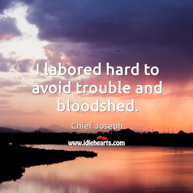 I labored hard to avoid trouble and bloodshed. Chief Joseph Picture Quote