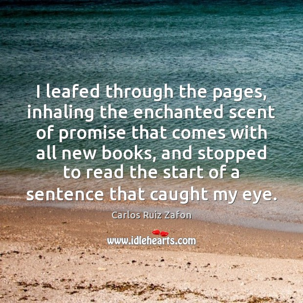 I leafed through the pages, inhaling the enchanted scent of promise that Image