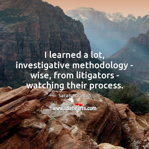 I learned a lot, investigative methodology – wise, from litigators – watching Sarah Stillman Picture Quote