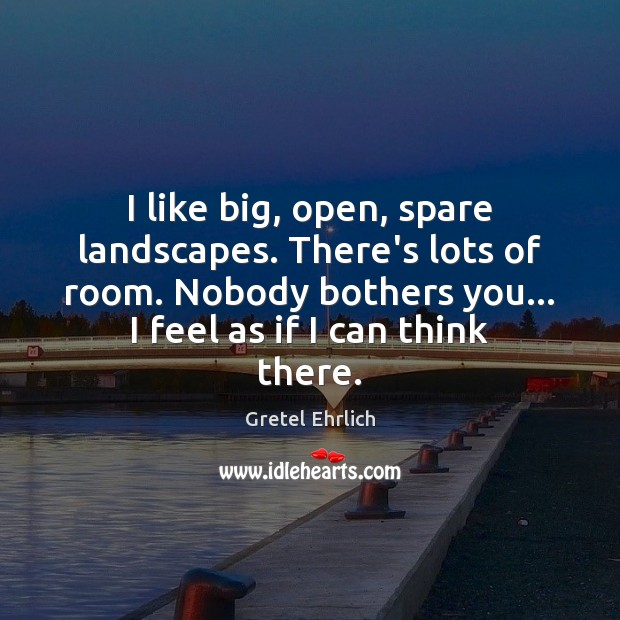 I like big, open, spare landscapes. There's lots of room. Nobody bothers Image