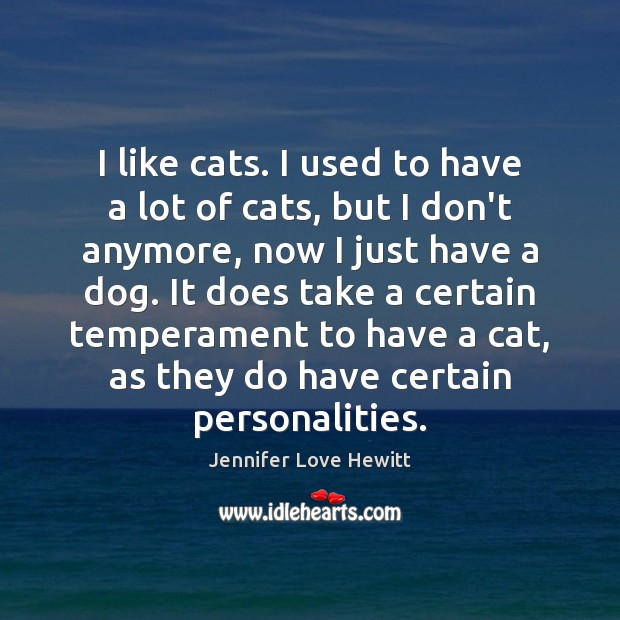 I like cats. I used to have a lot of cats, but Jennifer Love Hewitt Picture Quote