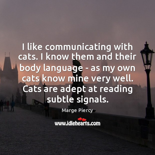 I like communicating with cats. I know them and their body language Marge Piercy Picture Quote