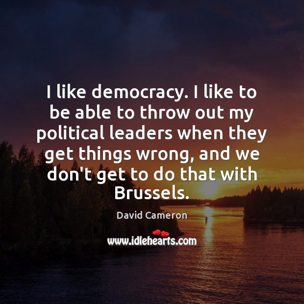 I like democracy. I like to be able to throw out my David Cameron Picture Quote