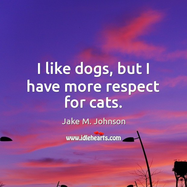 Image, I like dogs, but I have more respect for cats.