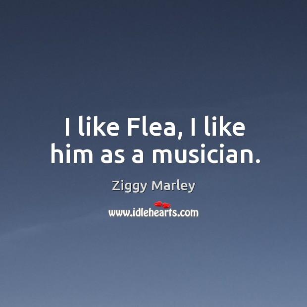 I like flea, I like him as a musician. Image