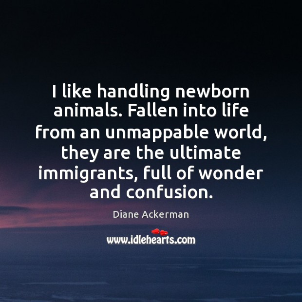 I like handling newborn animals. Fallen into life from an unmappable world, Diane Ackerman Picture Quote