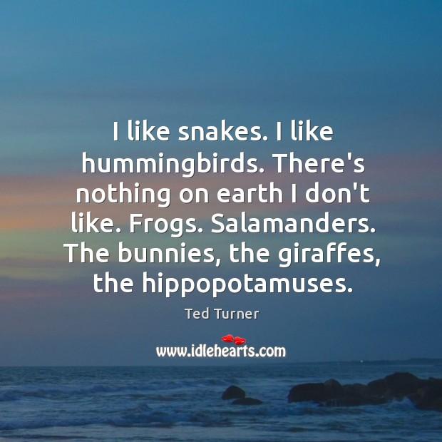 I like snakes. I like hummingbirds. There's nothing on earth I don't Image