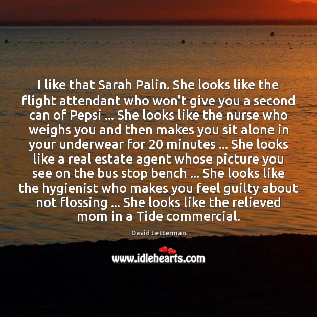 I like that Sarah Palin. She looks like the flight attendant who Image