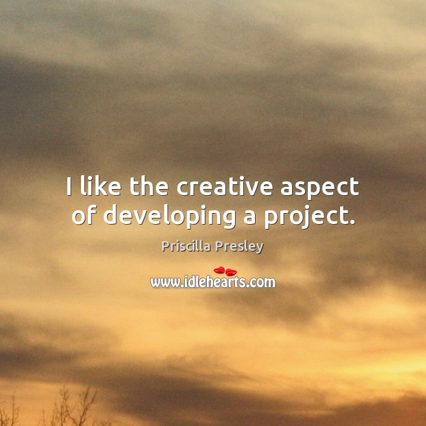 Image, I like the creative aspect of developing a project.