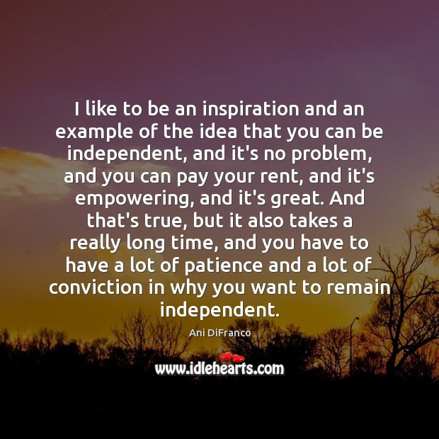 I like to be an inspiration and an example of the idea Ani DiFranco Picture Quote