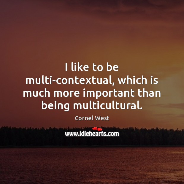 Image, I like to be multi-contextual, which is much more important than being multicultural.