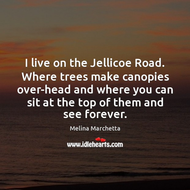 I live on the Jellicoe Road. Where trees make canopies over-head and Melina Marchetta Picture Quote