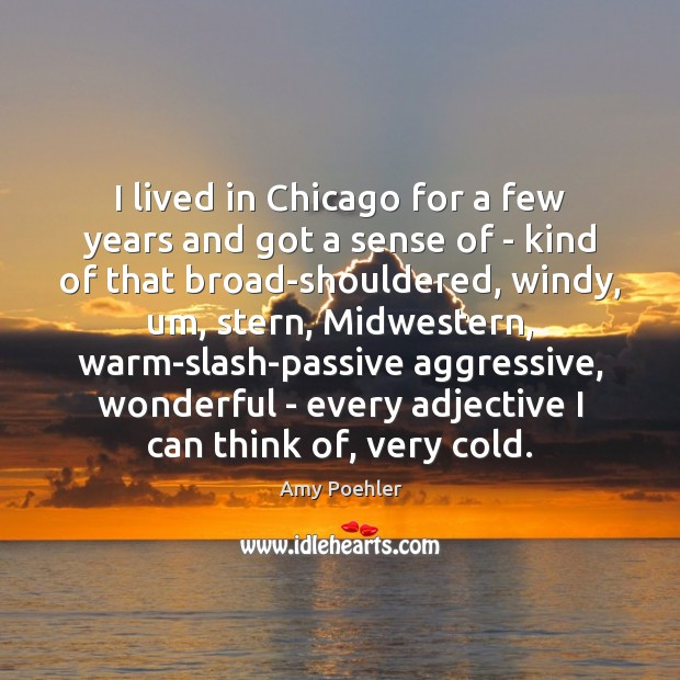 I lived in Chicago for a few years and got a sense Amy Poehler Picture Quote