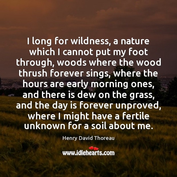 I long for wildness, a nature which I cannot put my foot Image