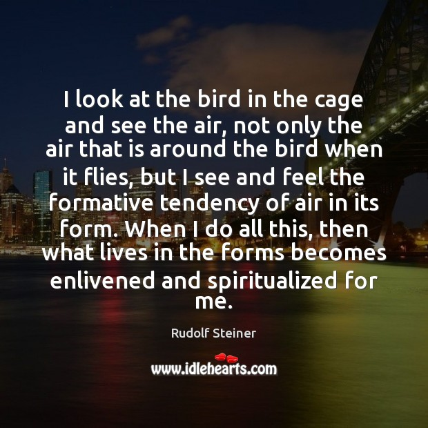 I look at the bird in the cage and see the air, Image
