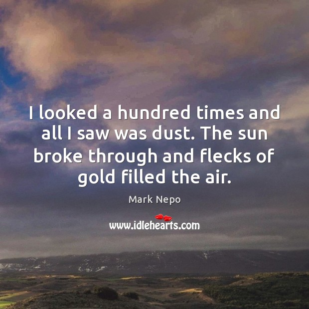 I looked a hundred times and all I saw was dust. The Mark Nepo Picture Quote