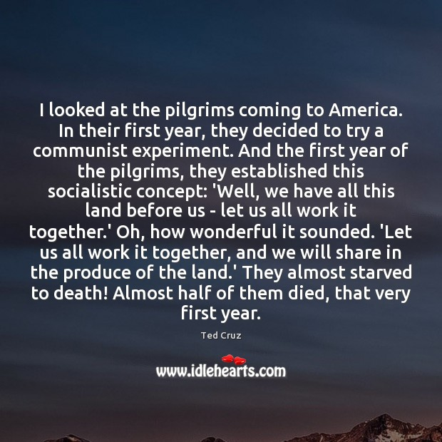 I looked at the pilgrims coming to America. In their first year, Ted Cruz Picture Quote