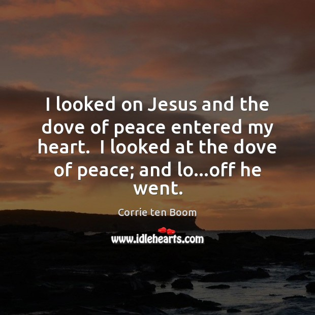 I looked on Jesus and the dove of peace entered my heart. Corrie ten Boom Picture Quote