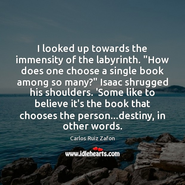 """I looked up towards the immensity of the labyrinth. """"How does one Carlos Ruiz Zafon Picture Quote"""