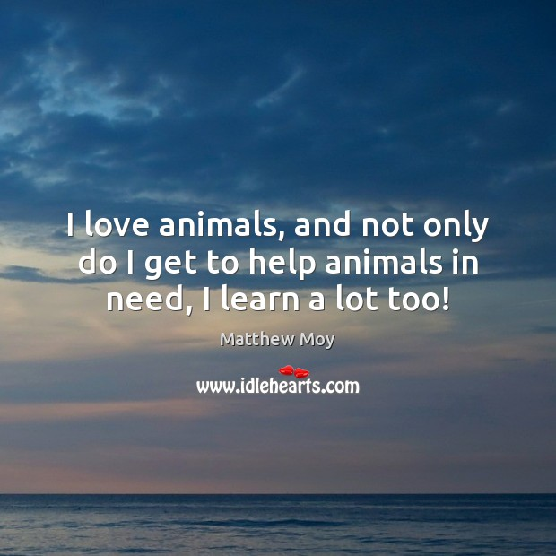 Image, I love animals, and not only do I get to help animals in need, I learn a lot too!