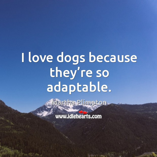 I love dogs because they're so adaptable. Image