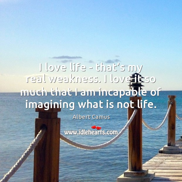 Image, I love life – that's my real weakness. I love it
