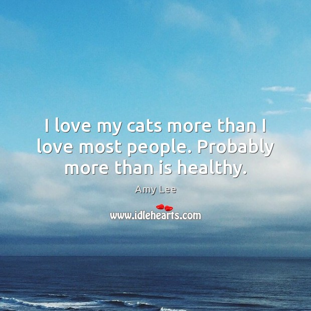 I love my cats more than I love most people. Probably more than is healthy. Image