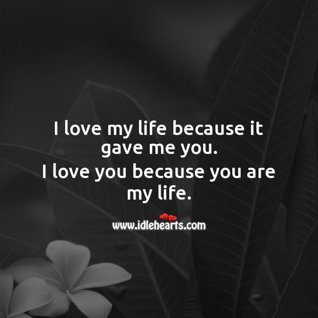 I love my life because it gave me you. I Love You Quotes Image