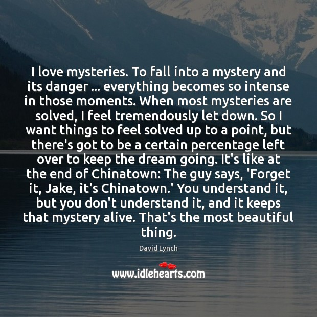 I love mysteries. To fall into a mystery and its danger … everything Image