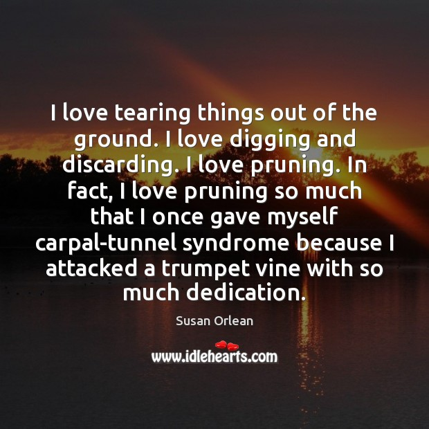I love tearing things out of the ground. I love digging and Susan Orlean Picture Quote