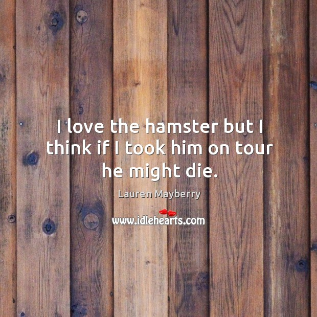 I love the hamster but I think if I took him on tour he might die. Lauren Mayberry Picture Quote